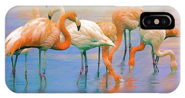 American Flamingos IPhone Case