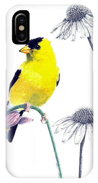 American Goldfinch On Coneflowers IPhone Case