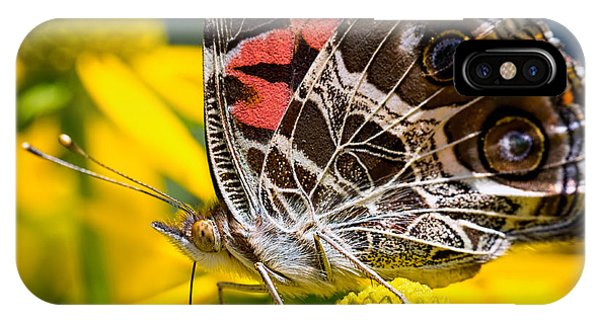 American Lady Butterfly IPhone Case