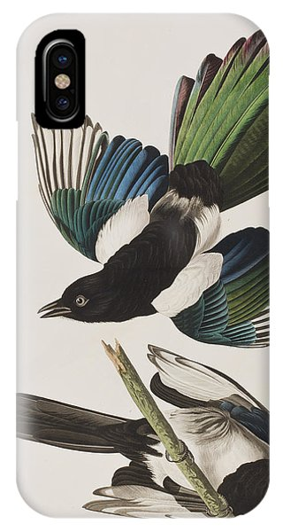 Magpies iPhone Case - American Magpie by John James Audubon