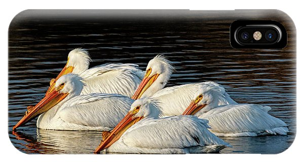 IPhone Case featuring the photograph American Pelicans - 03 by Rob Graham