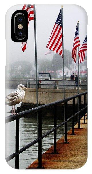 American Seagull IPhone Case