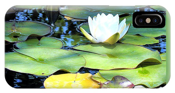 American Water Lilies Four IPhone Case