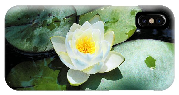 American Water Lilies IPhone Case