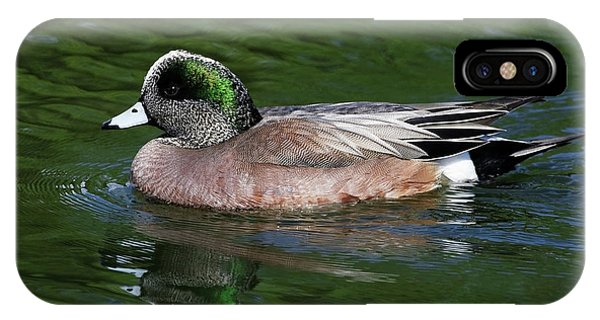 American Wigeon Anas Americana Duck IPhone Case