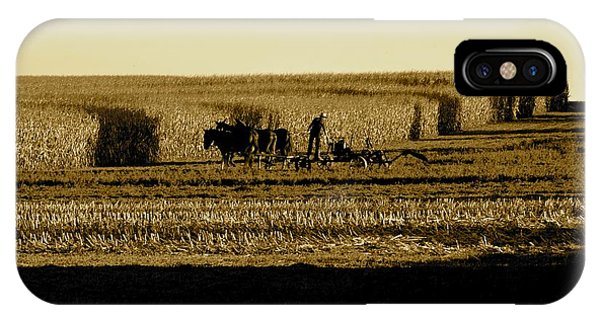 Amish Cornfield In Shadows IPhone Case