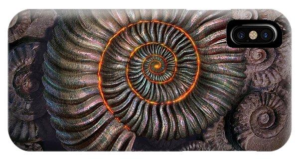 Fossil iPhone Case - Ammonite 1 by Jerry LoFaro