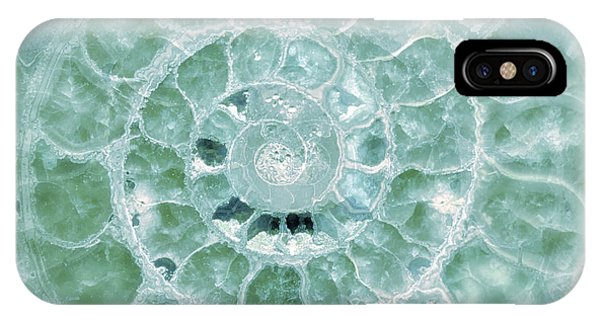 Ammonite Emerald Green IPhone Case