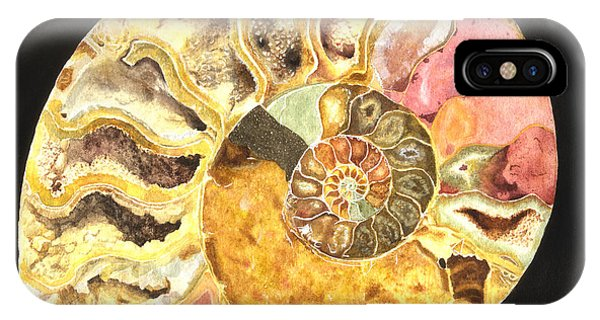 Ammonite Fossil IPhone Case