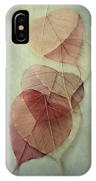 Leaf iPhone Case - Among Shades by Maggie Terlecki