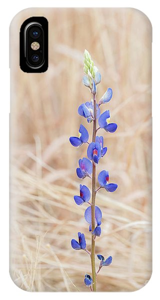 Among The Golden Grasses IPhone Case