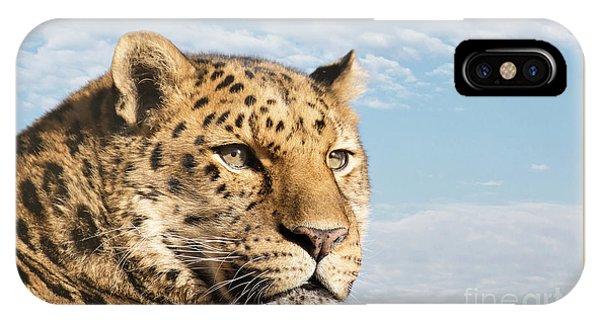 iPhone Case - Amur Leopard Against Blue Sky by Jane Rix