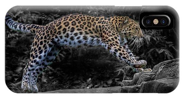 Amur Leopard On The Hunt IPhone Case