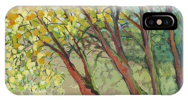 Park iPhone Case - An Afternoon At The Park by Jennifer Lommers