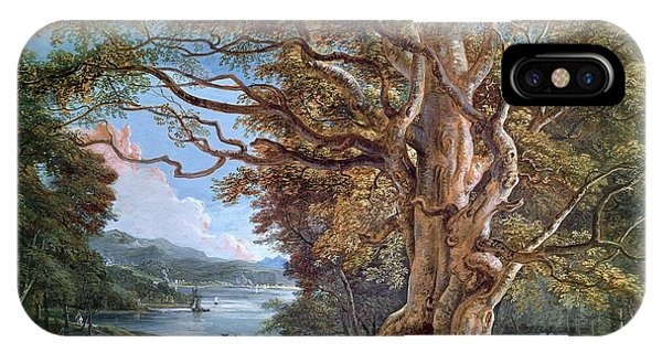 Stag iPhone Case - An Ancient Beech Tree by Paul Sandby