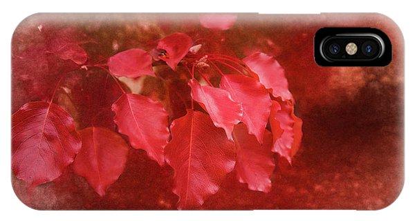 IPhone Case featuring the photograph An Autumn Bunch by Elaine Teague