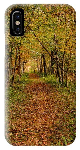 An Autumn's Walk IPhone Case