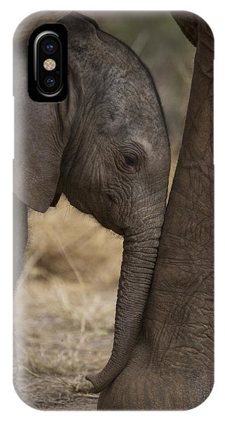 Young iPhone Case - An Elephant Calf Finds Shelter Amid by Michael Nichols