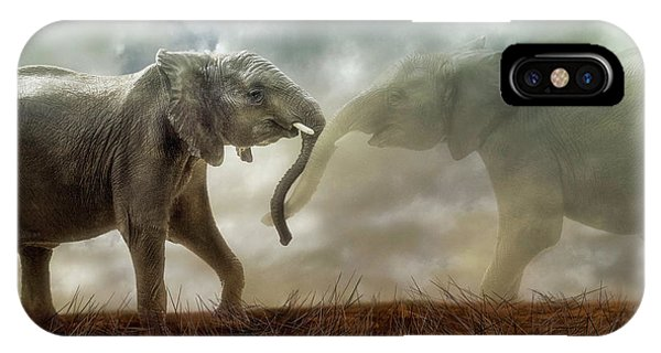 An Elephant Never Forgets IPhone Case