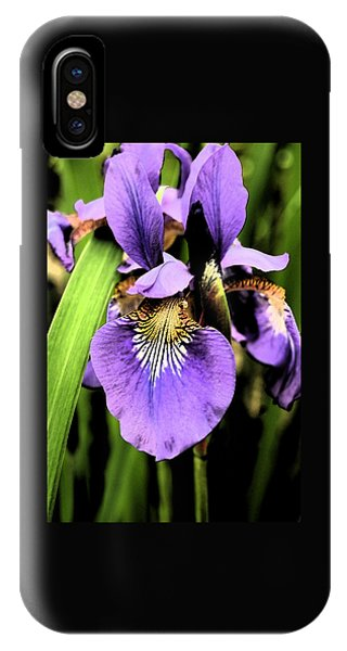 An Iris Portrait - Botanical IPhone Case