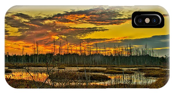 An November Sunset In The Pines IPhone Case