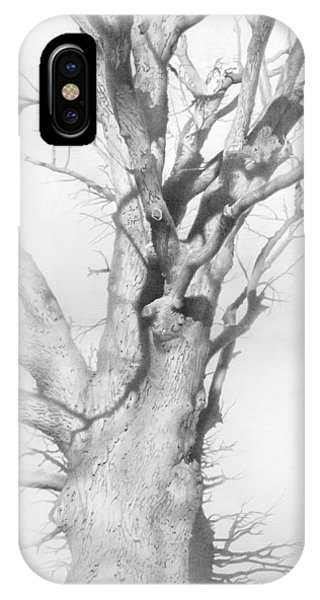 iPhone Case - An Oak In The Park 2002  by Denis Chernov