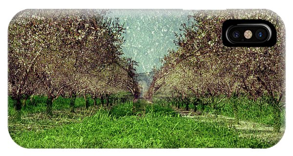 An Orchard In Blossom In The Eila Valley IPhone Case