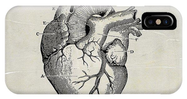 Anatomical Heart Medical Art IPhone Case