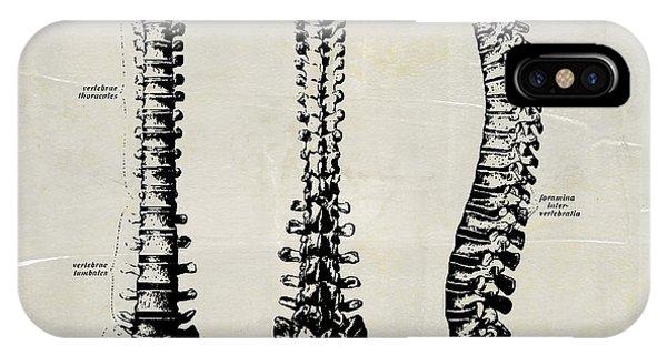 Anatomical Spine Medical Art IPhone Case