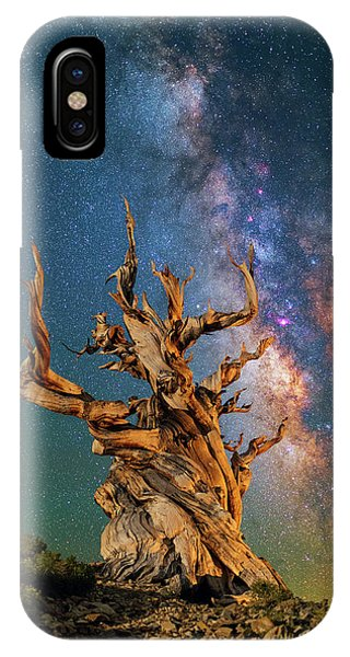 Ancient Beauty IPhone Case