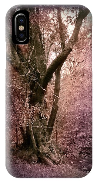 Ancient Tree By A Stream Phone Case by Laura Iverson