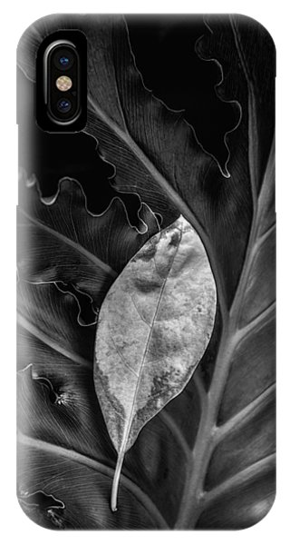 Botany iPhone Case - And I Will Catch You If You Fall by Tom Mc Nemar