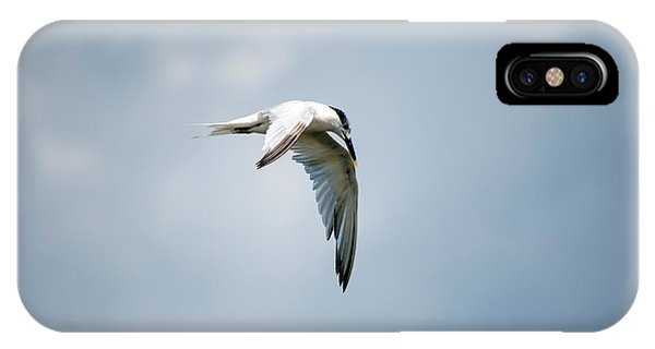 And Still The World Terns IPhone Case