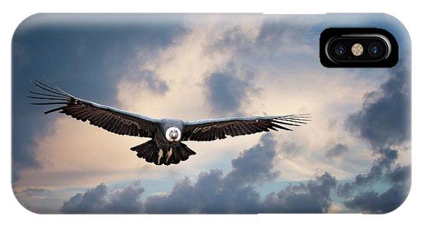 Andean Condor IPhone Case