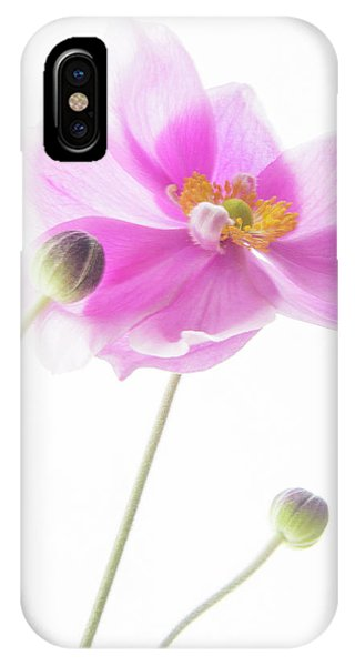 Anemone Babies  IPhone Case