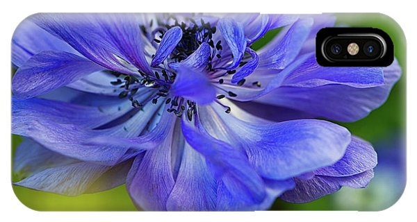 Anemone Blue IPhone Case