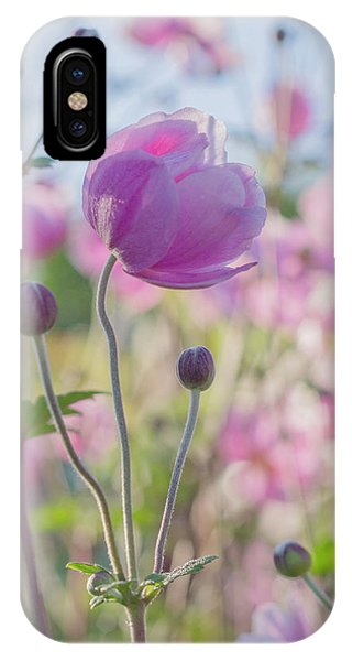 Anemone Softness  IPhone Case