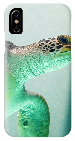 Reptiles iPhone Case - Angel 2 by Skip Hunt