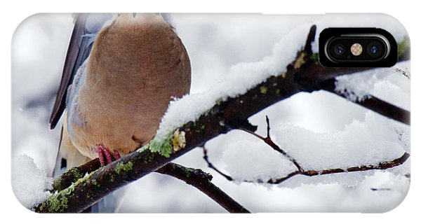 IPhone Case featuring the photograph Angel Mourning Dove by Angel Cher