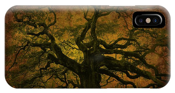 Angel Oak 3 Charleston IPhone Case