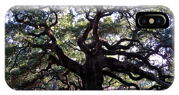 Angel Oak II IPhone Case