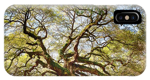 Angel Oak In Spring IPhone Case