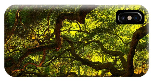 Angel Oak Limbs 2 IPhone Case