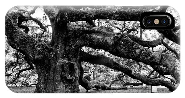 Angel Oak Tree 2009 Black And White IPhone Case