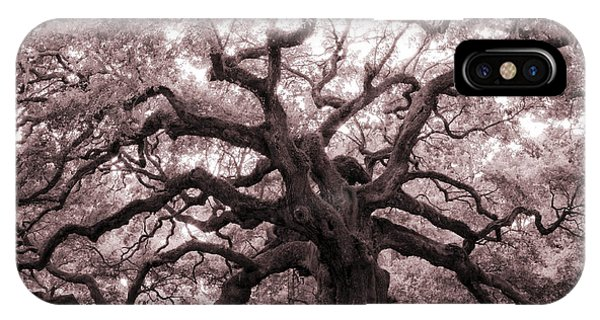 Angel Oak Tree IPhone Case