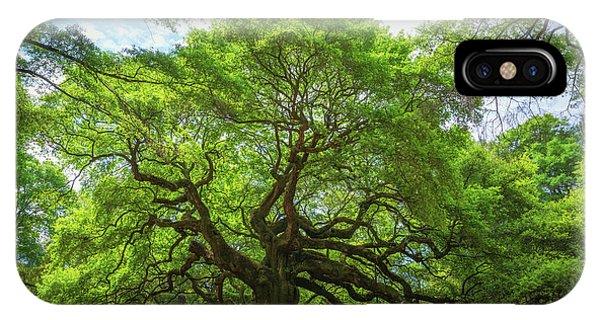Angel Oak Tree In South Carolina  IPhone Case