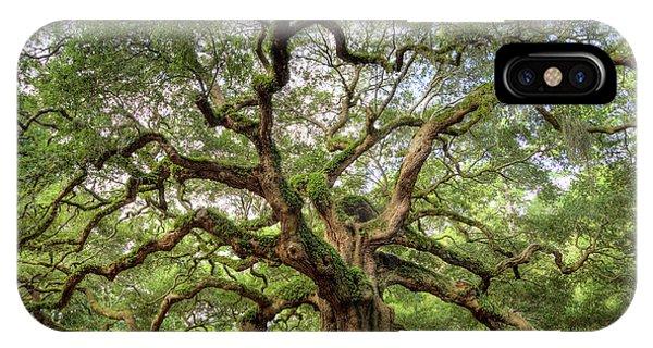 Angel Oak Tree Of Life IPhone Case