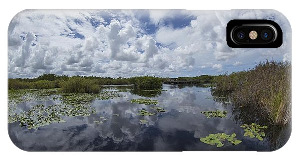 Anhinga Trail 86 IPhone Case
