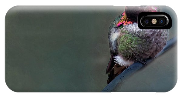 Beautiful Hummingbird iPhone Case - Anna Hummer by Rebecca Cozart