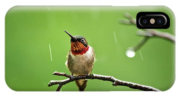 Humming Bird iPhone Case - Another Rainy Day Hummingbird by Christina Rollo
